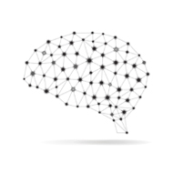 The Brain, The Mind and Mental Health